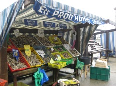 Cancale Oyster Stalls